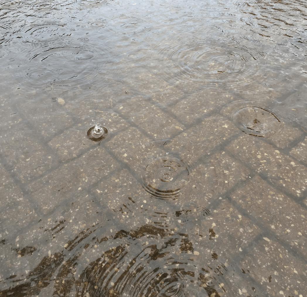 Overstroming na zware regenval. Enkele oplossingen voor in en rond je woning en voorkom hiermee tegelijk verstoppingen!